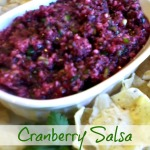 Tasty Tuesday: Cranberry Salsa