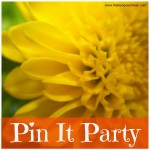 Pin It Party – 5 Posts Worthy of Pinning