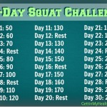Squat Challenge + 500-Rep Weight Circuit