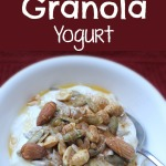 Deconstructed Granola Yogurt