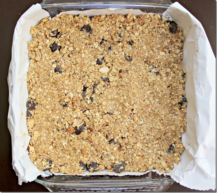 Coconut Chocolate Nut Granola Bars1