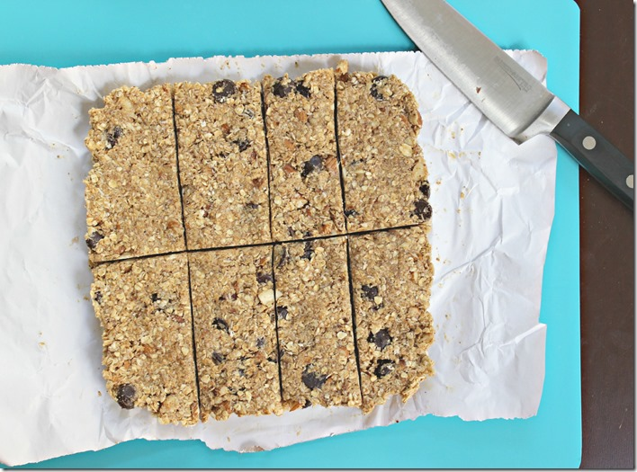 Coconut Chocolate Nut Granola Bars2