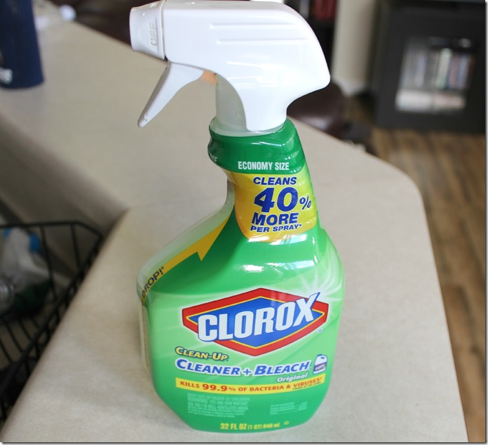 Clorox Cleaner Bleach