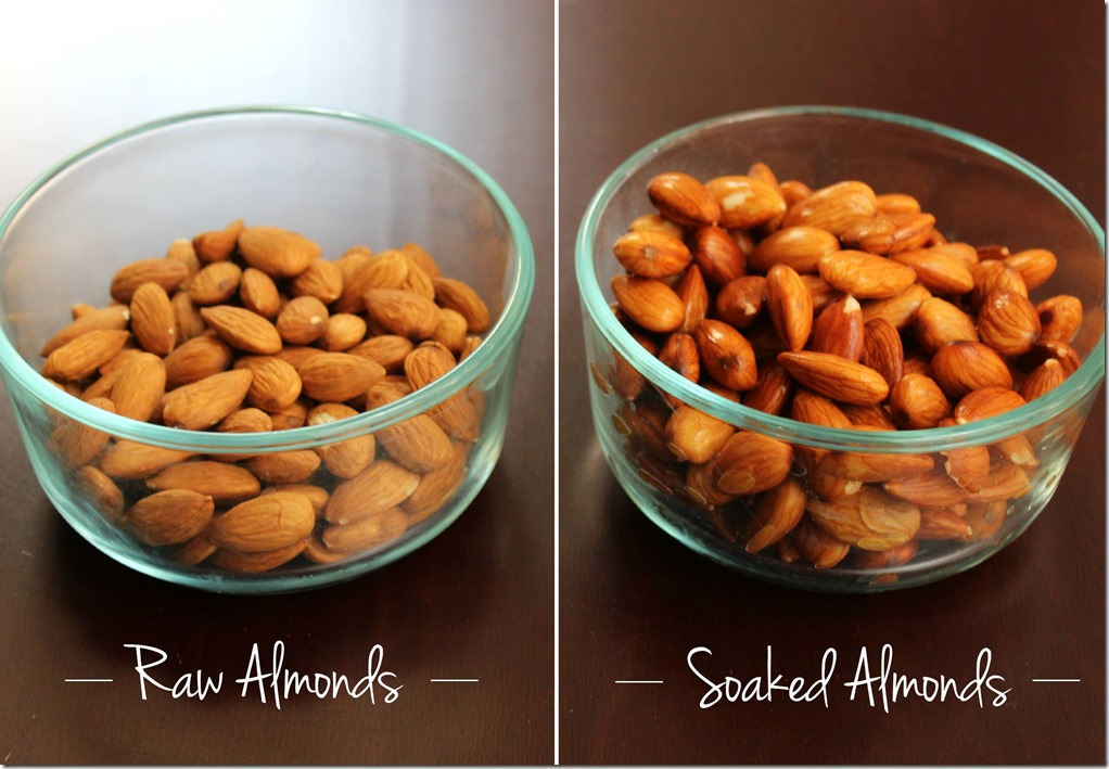 Raw Almonds for Almond Milk