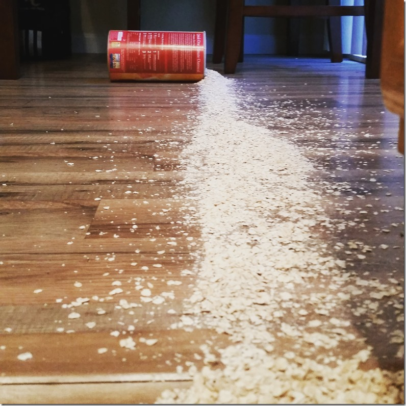Oats all over the floor