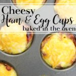 cheesy-baked-ham-egg-cups