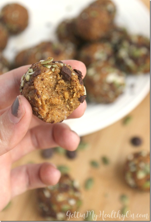 Pumpkin Protein Balls with Chocolate Chips