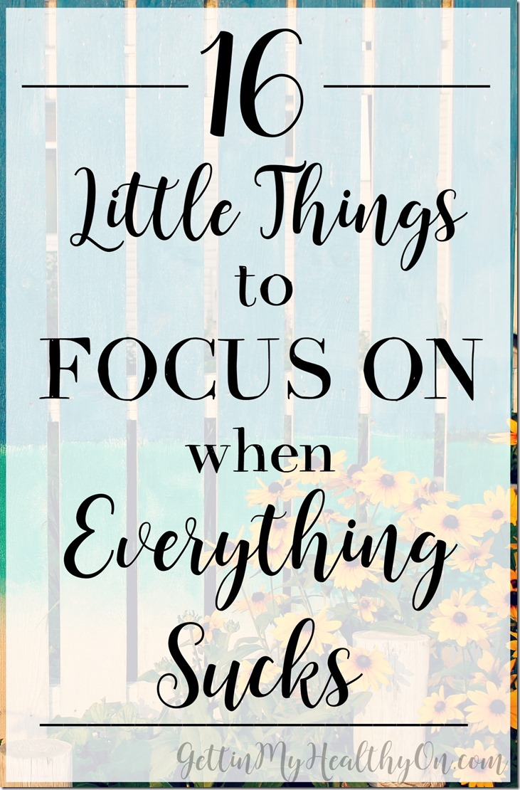 Little Things to Focus on When Everything Sucks